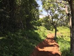 trilha panoramica